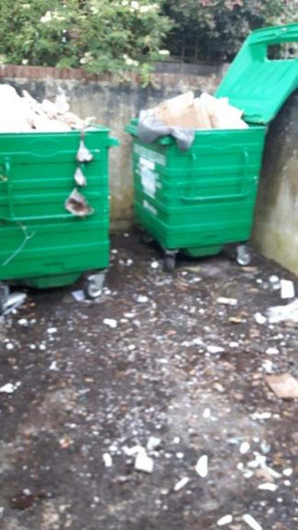 contaminated and overflowing recycling isis court -Lynton Court Lynmouth Road, Reading, RG1 8DE