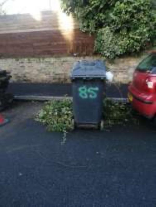 Please clear flytip of garden waste-33 Crescent Way, Honor Oak Park, SE4 1QL