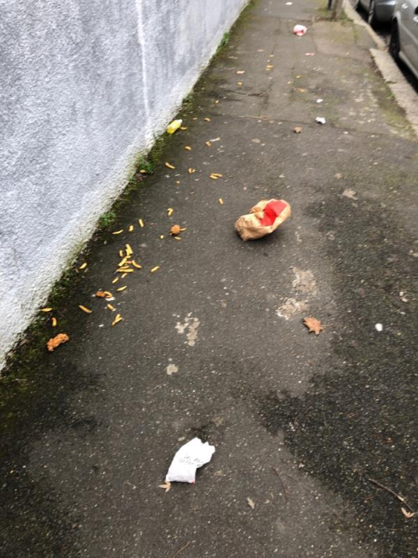 Litter on pavement-50 Cranmer Road, London, E7 0JL