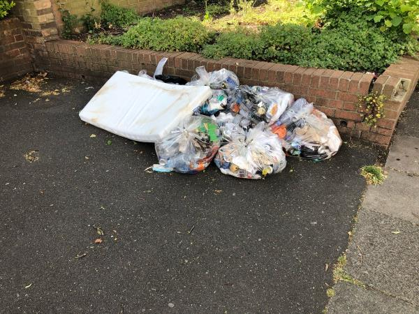 Rubbish bags which have then become focus for more littering.-36 Dyson Road, London, E15 4JX