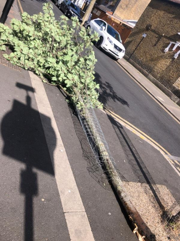 Someone has chopped down the tree.second tree there. Must be by someone who lives and parks their car there-102 South Esk Road, London, E7 8HD
