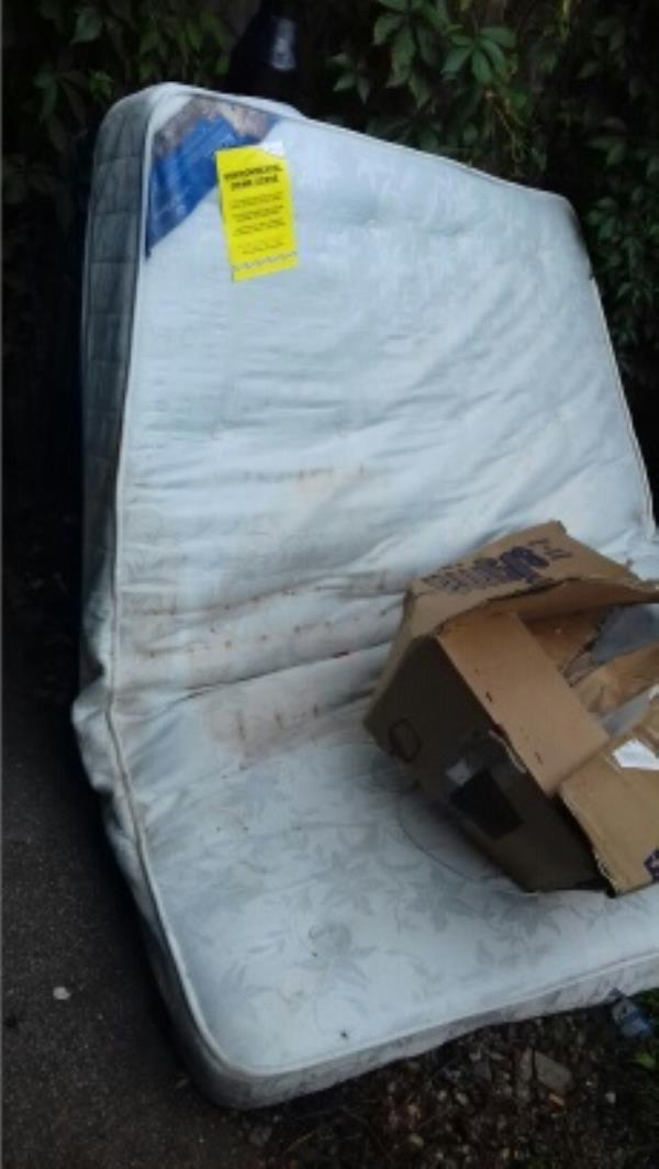 A mattress and a cardboard box dumped in the alley way opposite 61 Cave Road -59 Cave Road, London, E13 9DX