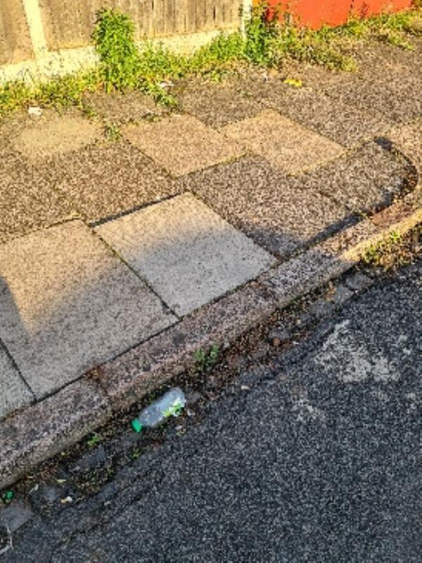 litter on Clarke Street,  this is becoming a systemic problem with large amounts of litter left by youth on our streets in the evening.  -39 Sandringham Avenue, Leicester, LE4 7NT