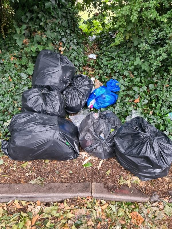 8 black bags discarded on side of road-153 Capel Road, London, E7 0JT