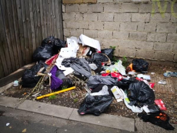 Flytip including rats (not mice!) darting around. Smells awful too -81 Woodgrange Rd, Forest Gate, London E7 0EP, UK