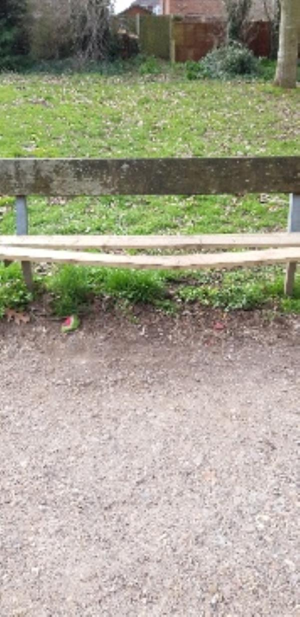 faulty park bench may have been vandalised. there is a wood knot where it might snap.  Sorry have probably logged to the wrong category. please can you forward onto the right team-63 West Heath Road, Farnborough, GU14 8QX