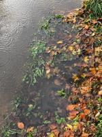 Three drains blocked and extensive dangerous road flooding this week. The drains were blocked to the right of 'The Farmhouse' driveway image 1-The Farmhouse BN180BA