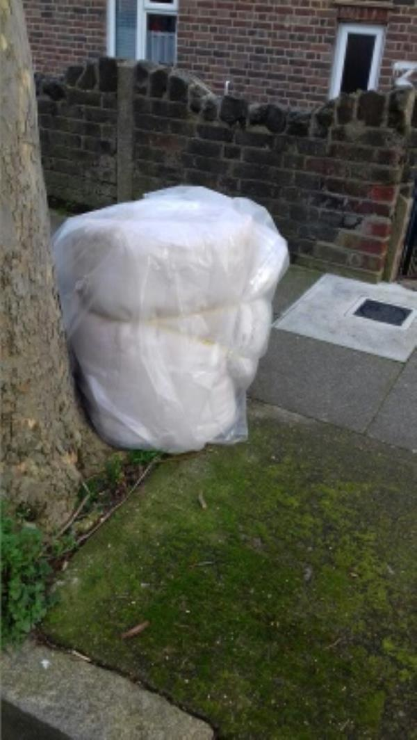 A mattress dumped outside 35 Palmer Road -33 Palmer Road, London, E13 8NU