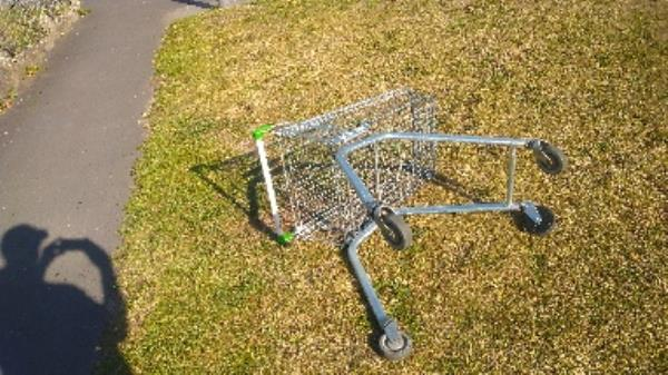 Flytipped trolley no evidence taken -162 Linden Road, Reading, RG2 7EH