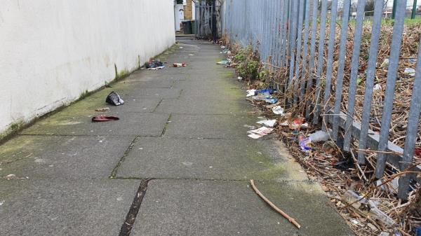 weeks of litter strewn along path between Perth and Cave Roads-66 Perth Road, London, E13 9DS