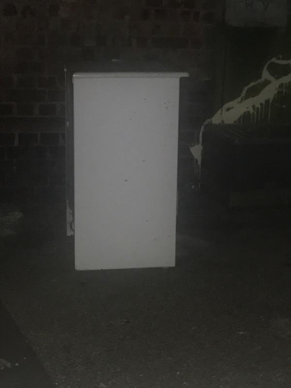 Dumped fridge, which is bringing rats -48 Tree Road, Canning Town, E16 3DZ