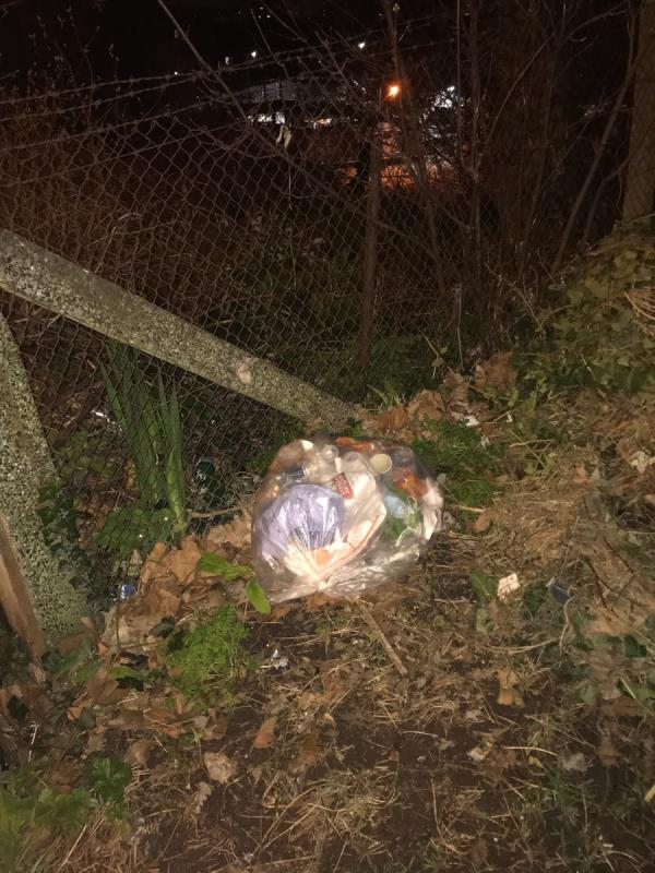 Clear plastic bag full of domestic rubbish. Big heap of ivy which I have reported before. -1 Cliff Terrace, London, SE8 4DZ