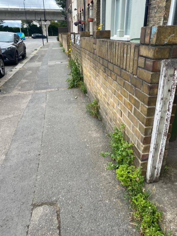 Weeds growing all along Boxley Street (both sides) by the walls and on the kerbs. -10 Boxley Street, North Woolwich, E16 2AN