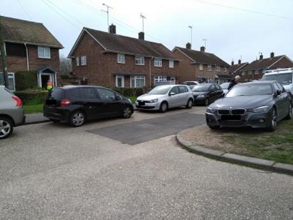 Parking on grass and driving on grass green causing damage to curbs and verge, needs a couple of trees to stop parking and driving on verge, also school parents parking and blocking road and damaging curb stones, because of the bad weather the grass is just muddy and messy.-Palmerston Avenue