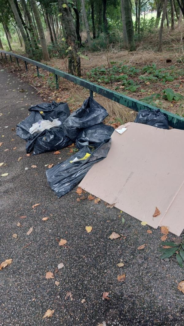 Discarded rubbish between bus stop and roundabout-Jake Russell Walk (Stop A), London E6 5LT, UK