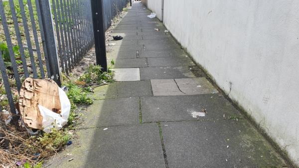 old wood and litter on path between Perth and Cave road.-66 Perth Road, London, E13 9DS