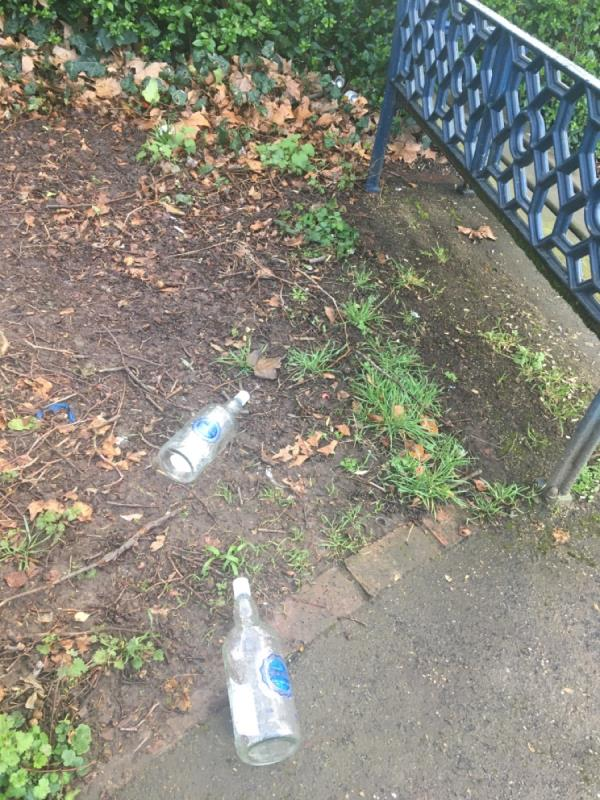 Location Forest Lane Park, benches by small pond , vodka bottles and beer cans-11 Shelduck Close, London, E15 1RZ