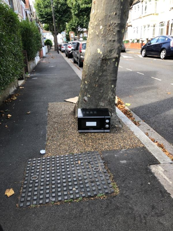Under tree -32 Ladysmith Avenue, East Ham, E6 3AR