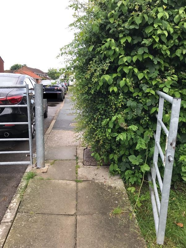 Pathway into Henfield Medical Centre is becoming blocked by overgrown hedge....please can this be cut back?-6 Chantry Close, Henfield, BN5 9HZ