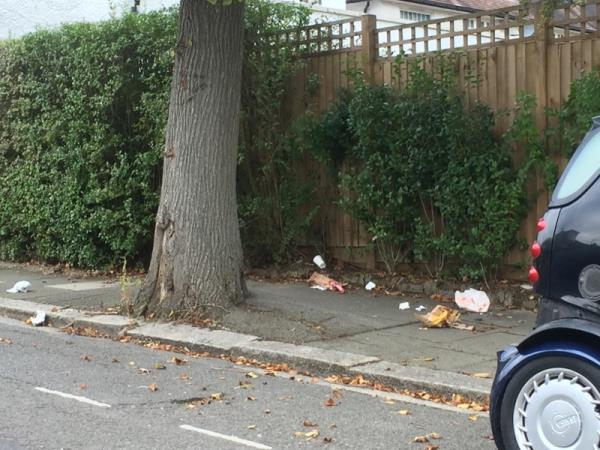 Litter on pavement and in gutter -50 Beaufort Road, Ealing, W5 3EA