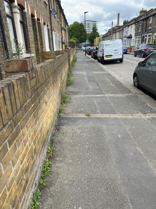 Weeds all along the pavement and road gutters on Boxley Street.  image 1-5 Boxley Street, North Woolwich, E16 2AN