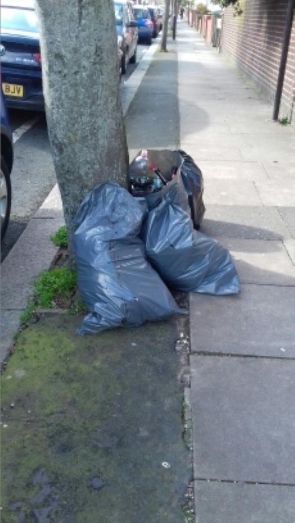 4 bags -194 Caledon Road, London, E6 2EY