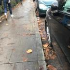 Wet leaves needs sweeping. It's also covering up the drains. -6 Southwold Road, London, E5 9PS