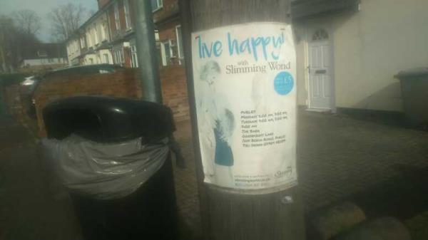 fly-poster on the lamppost -2b Norcot Road, Reading, RG30 6BU