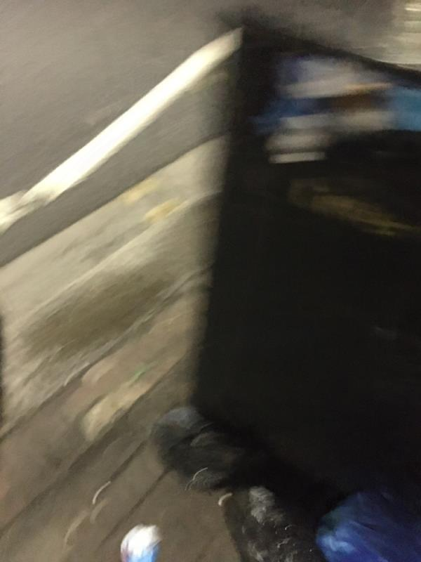 Bin needs to b you emptied -380 High Street North, Manor Park, E12 6PH