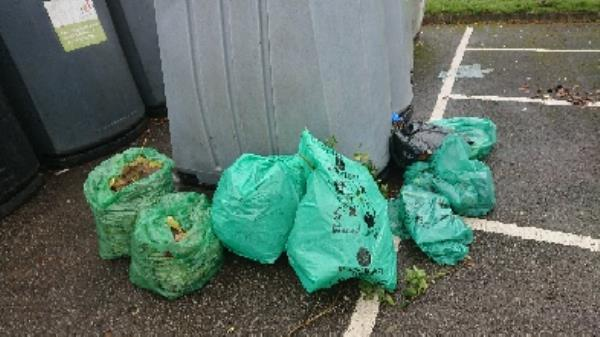 House old waste removedl fly tipping and green waste park image 1-13 Northbrook Rd, Reading RG4 6PW, UK