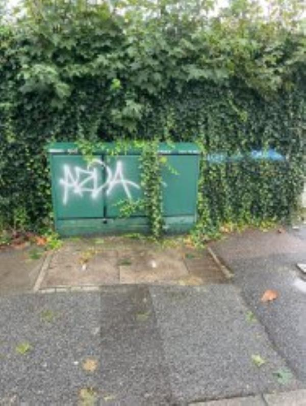 Remove Graffiti from cable Box. Reported via Fix My Street-50 Luffman Road, London, SE12 9SX