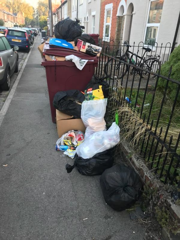 Rubbish left on the street outside the bins and incorrect bin used (meant to be waste for collection rather than recycling) -47 Blenheim Road, Reading, RG1 5
