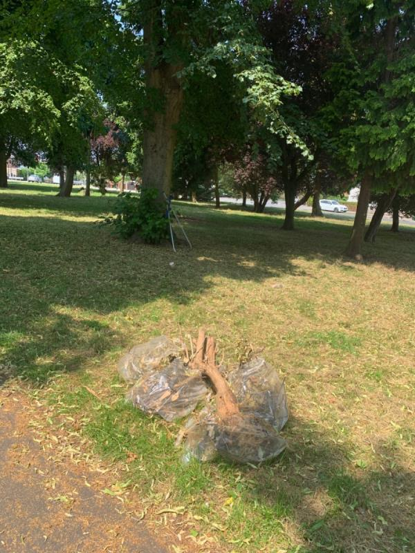 Fly tipping on the roundabout garden waste has been dumped-91 Hallam Crescent East, Leicester, LE3 1DF