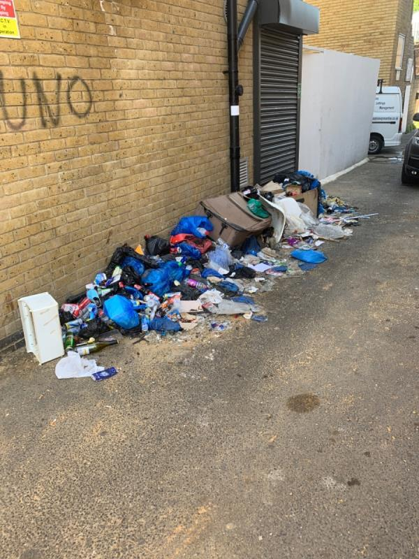 People have dumped rubbish in the alleyway behind 239 High Street North, E6 1JG; and this is attracting rats and smells really bad. The alley is on Plashet Grove, E6 1DQ. Please could someone kindly collect the rubbish and put up a sign to say that offenders will be prosecuted. Thank you.-Daya House, 298 Plashet Grove, London, E6 1DQ