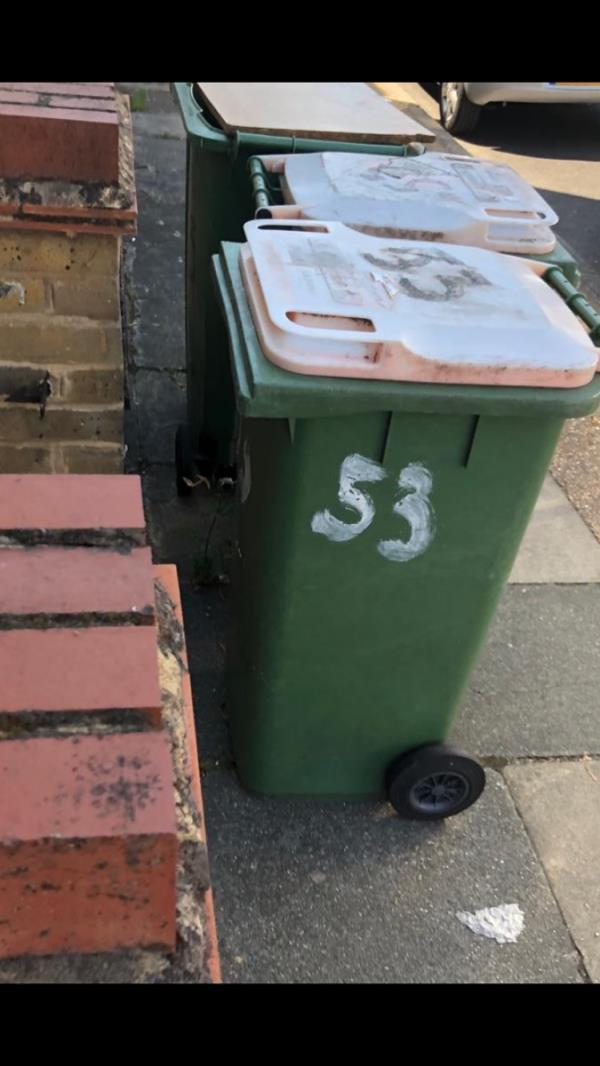 Hi bin in number 53 Skelton road forest gate London E7 9NL has no lid it's cusses plenty flies and smells and also there garden is in the mess please look into the matter or send a Enforcement team  image 1-29 Skelton Road, London, E7 9NL