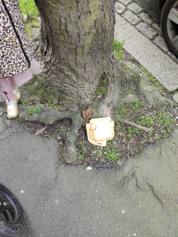Dog poo by tree-31 Bovill Road, London, SE23 1HB