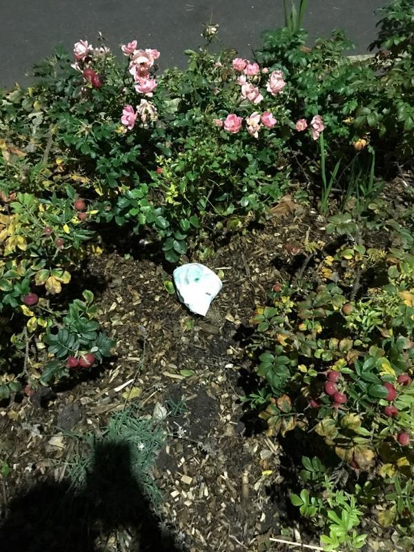Used nappy in flower bed -23 Durham Road, London, E12 5AY