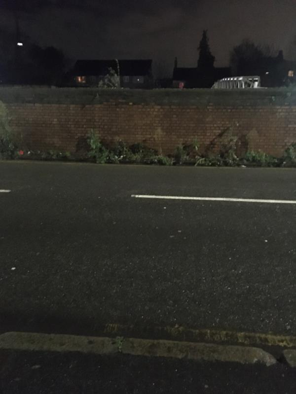 Weeds along railway wall, been reporting these since summer of 2019🙄-143 Forest Lane, London, E15 4NT