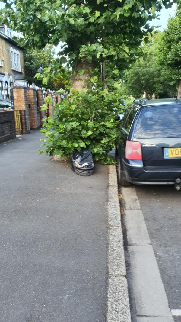 basket-121 Earlham Grove, London, E7 9AP