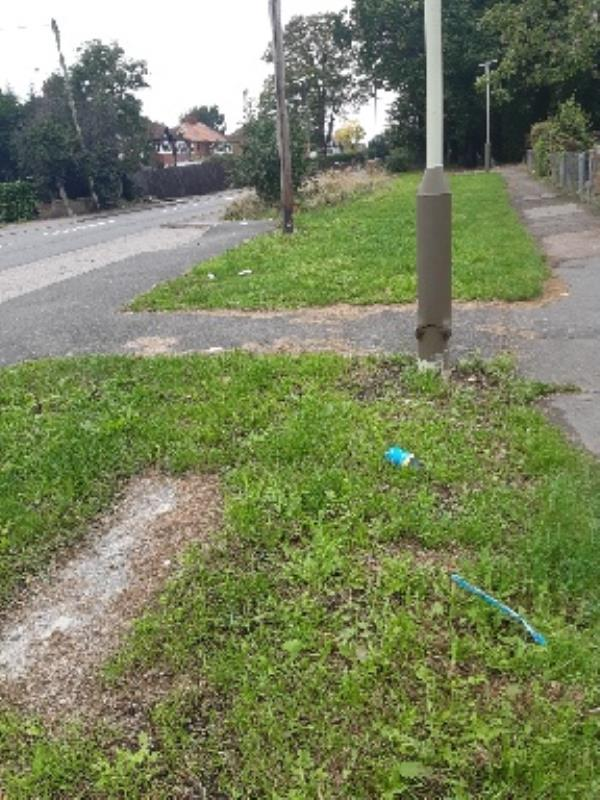 litter on verge on Braunstone Lane outside bungalows-453 Braunstone Lane, Leicester, LE3 3DD
