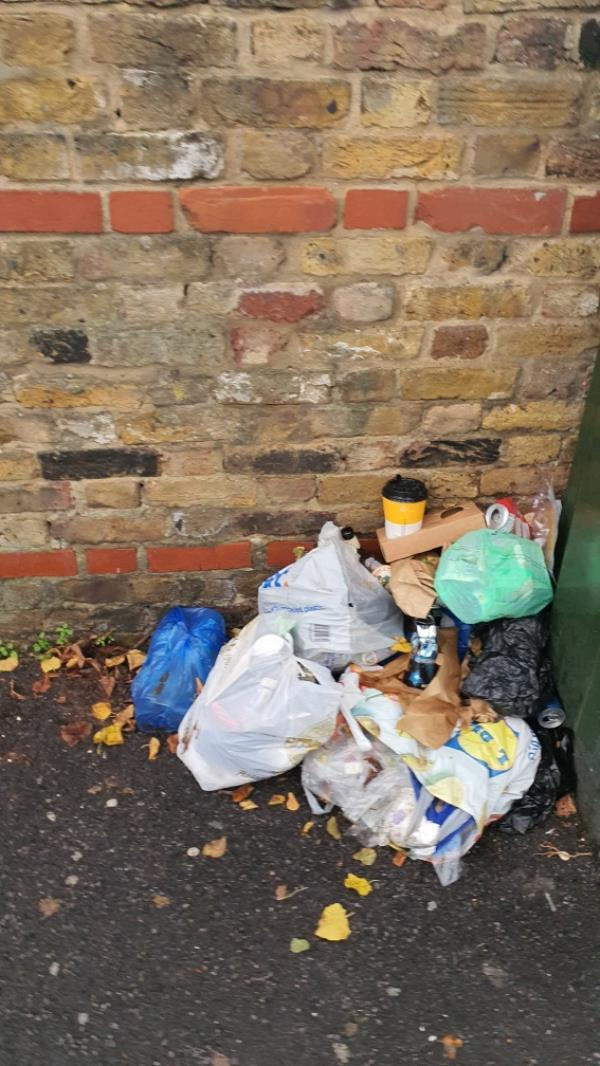 Bags. Repeatedly reported and marked cleared. Richmond Road.-473A Romford Rd, London E7 8AD, UK