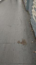 The floor needs cleaning throughout the underpass -The Biscuit Tin Station Hill, Reading, RG1 1NB