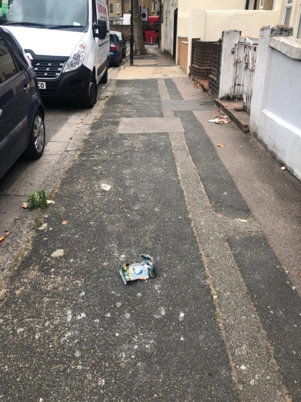 The street needs to be swept please-51 Wilson Road, Plaistow, E6 3EF