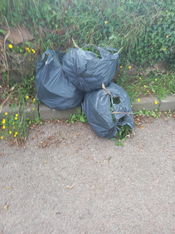 Three black bags of green waste dumped in the school bus lane at Grainville playing fields-Grainville School, Jersey JE2, Jersey