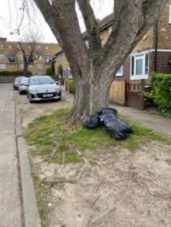 Please clear dumped bags from grass area-36 Exbury Road, London, SE6 4NB