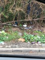 Lots more then just the rubbish in the photos  image 2-7 Firefly Gardens, London, E6 5YS