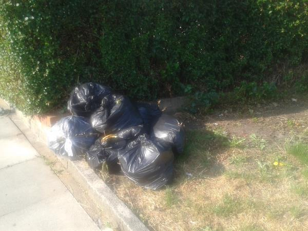 Junction of Oakridge Road. Please clear black bags from grass area-7 Shroffold Road, Bromley, BR1 5PD