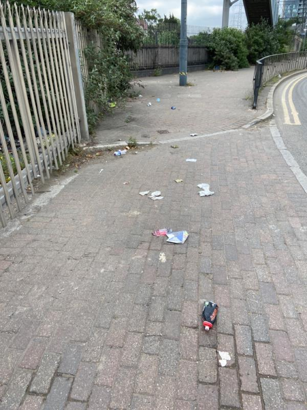 Litter on the pavement -Lime Street, Canning Town, E16 1HL