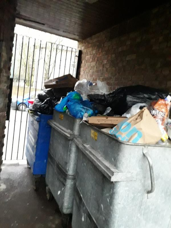 I would like to Request  additional bin at Romney Close 13-28,as the current amount is not sufficient.  the bins are overflowing close to collection day.  More likely the paladin bin would be good. -25 Romney Close, New Cross Gate, SE14 5JH