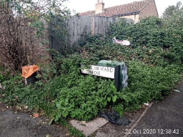 Bag of soil, lots of litter and rubbish around bin under bushes and a pram in bushes-89 Dulnan Close, Reading, RG30 6AA